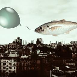 freetoedit edited edit surrealism city