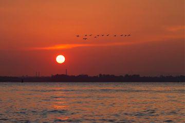 nature sunset photooftheday picoftheday picsart