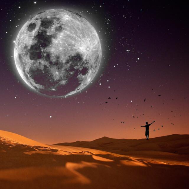 Shine on!  #moon #sky #edited #birds #doubleexposure birds by @mher_pa  #freetoedit