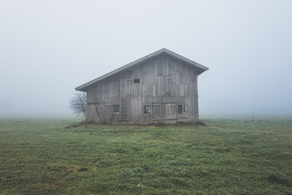 The world is yours to explore. Inspire us with your creativity.  Unsplash (Public Domain)  #FreeToEdit #fog #house #foggy #nature #barn #farm