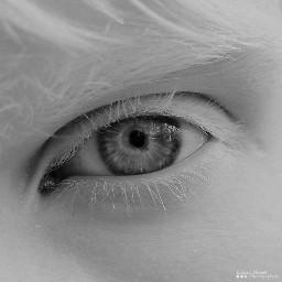 bw albino bwlover russia art freetoedit