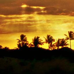 beach tropical landscape sunset hawaiiphotography