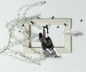 doubleexposure edited frame birds cloud freetoedit