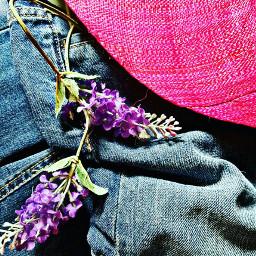 flower color live colorful trendsetter