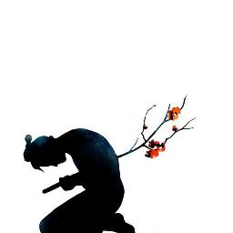 anime boy sad sakura tree died