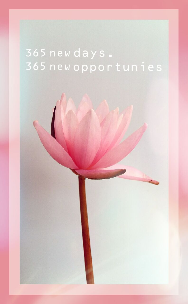 Best 50+√ Lotus Flower Quotes Sayings