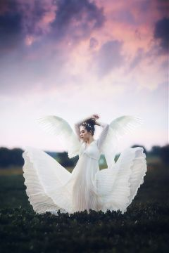 freetoedit angel angelwings edited pure