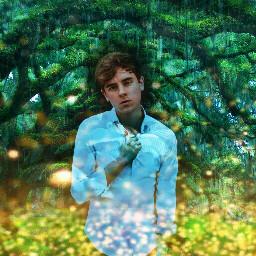 connorfranta trees pixiedust magic
