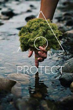 protectnatures freetoedit edited interesting art